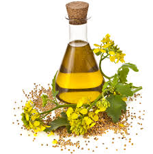 canola-oil-benefits