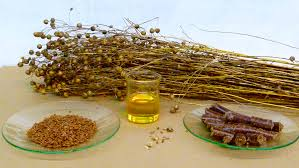 linseed-oil-benefits