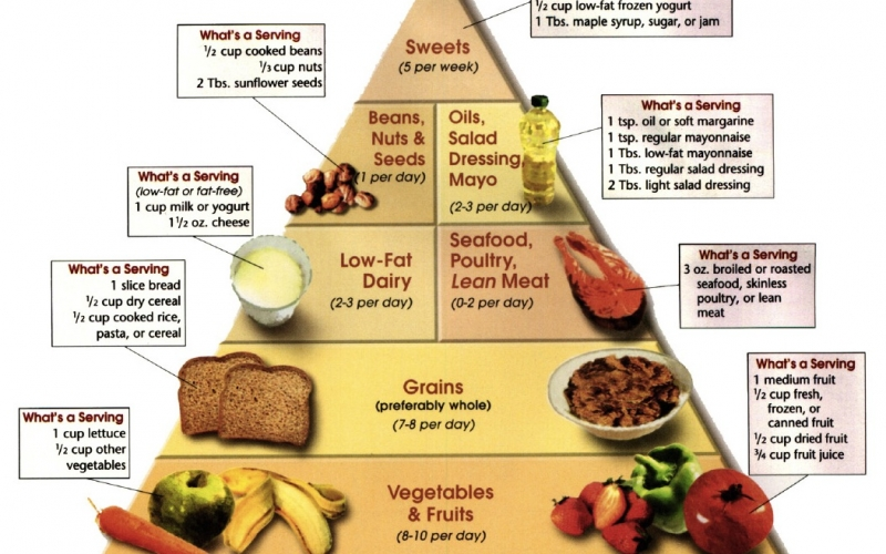 healthy eating plan for healthy life
