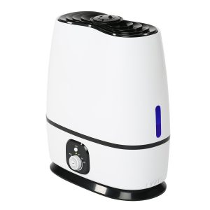 Everlasting Comfort Ultrasonic Humidifier