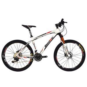 BEIOU Carbon Fiber Mountain Bike