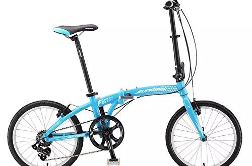Sundeal F1 Folding City Urban Travel Bike
